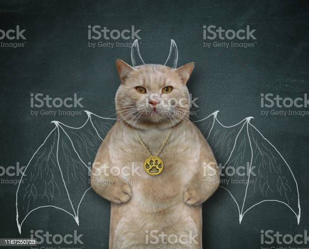 Cat wants to be bat 3 picture id1167250723?b=1&k=6&m=1167250723&s=612x612&h=o8z k 8fkqqnaymjhncz4naoznwskthtx0f8bcbdcms=