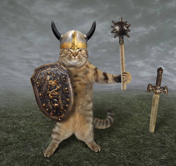 Cat warrior in a field The cat in a viking helmet holds a mace and a shield. He is on the battlefield. battlefield stock pictures, royalty-free photos & images