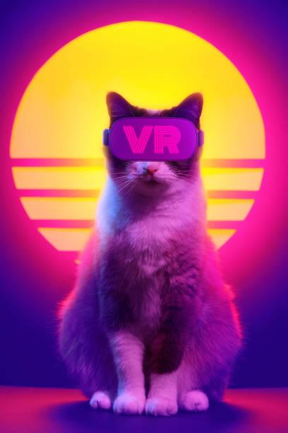 Cat wearing virtual reality goggles wireless headset picture id1141185038?b=1&k=6&m=1141185038&s=612x612&w=0&h=lhq x0p2qhectd7jib9kq8w5r7oyf siuebm79no ho=