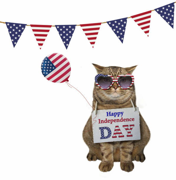 cat with a balloon under flags - fourth of july стоковые фото и изображения