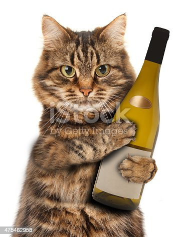 istock cat with a bottle of wine 475462958