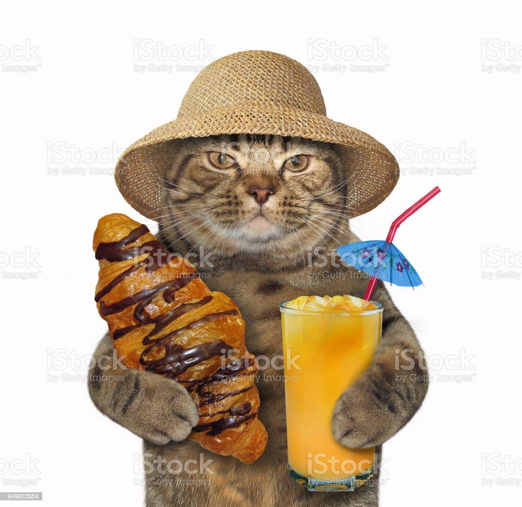 Cat with a chocolate bun and juice stock photo