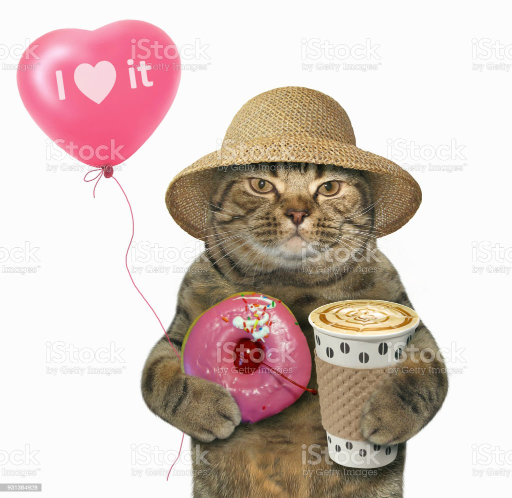 Cat with a pink donut and a balloon stock photo