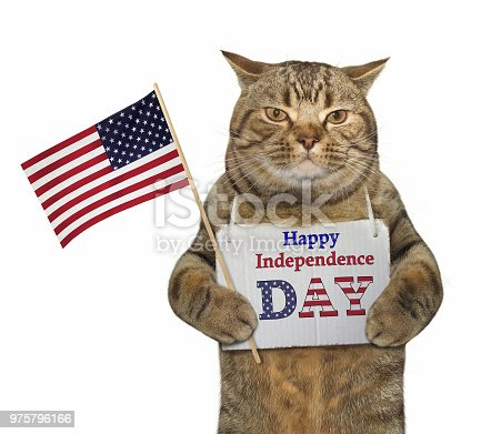 490776989 istock photo Cat with a sign and a flag 975796166