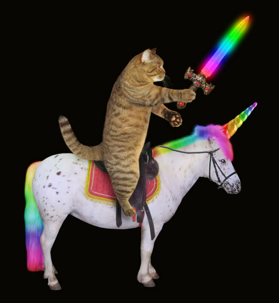 Cat with a sword rides the unicorn 2 stock photo