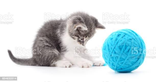 Cat with ball of yarn picture id654630514?b=1&k=6&m=654630514&s=612x612&h=yl83ee0fdcn3w7b5uj hgur2wvzrmybrrhfb1rkprnw=