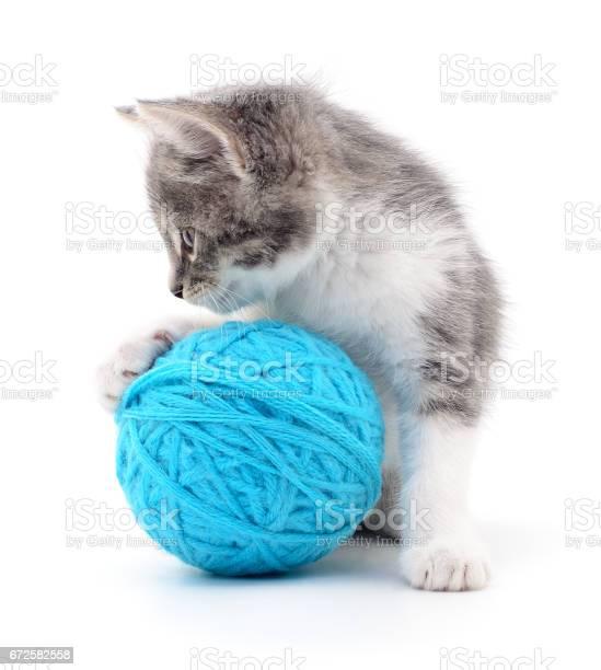 Cat with ball of yarn picture id672582558?b=1&k=6&m=672582558&s=612x612&h=7ldpochqcja8ve7y8fbwz7dvdq4az6lvy0yu afmtww=