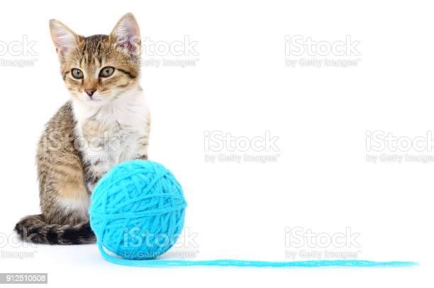 Cat with ball of yarn picture id912510508?b=1&k=6&m=912510508&s=612x612&h=4l5a3ly3jihmrtrcxputjvtbyu7ay j8gtsny0v61yg=