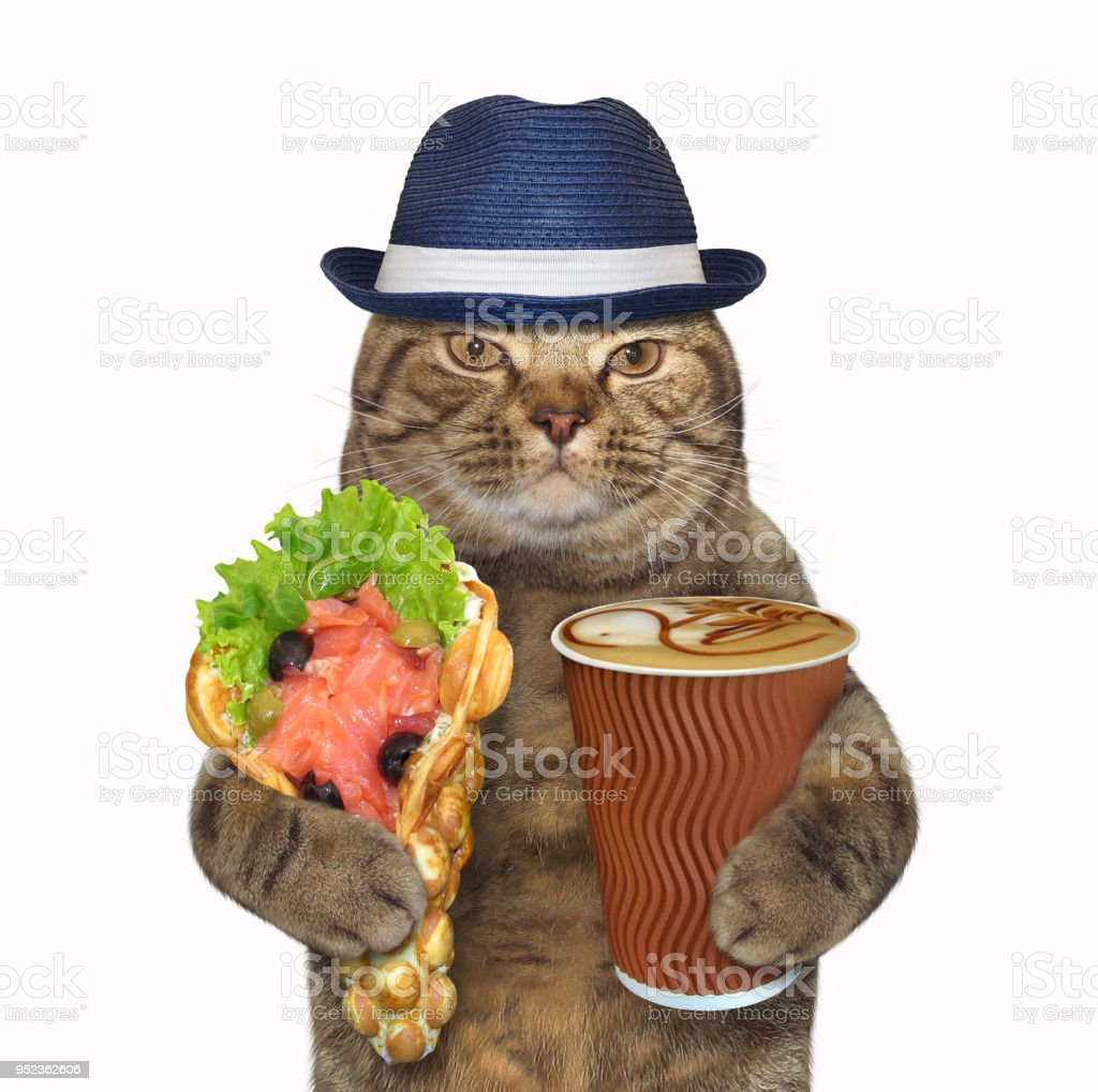 Cat with bubble waffles and coffee – zdjęcie