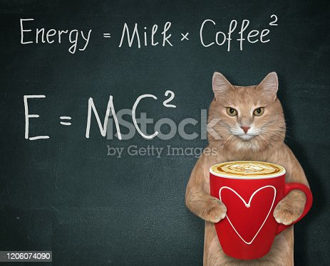 The ginger cat holds a red cup of black energy coffee with milk. There are two funny formulas next to him. Black background.