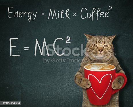 The beige cat holds a red cup of black energy coffee with milk. There are  two funny formulas next to him. Black background.