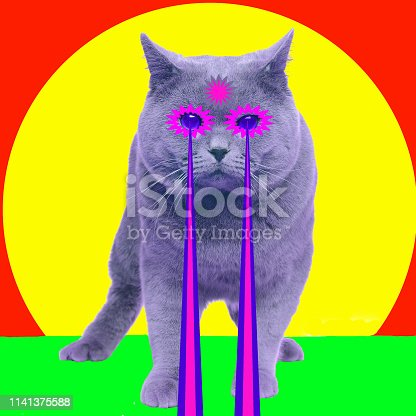 istock Cat with lasers from eyes. Minimal collage fashion concept 1141375588