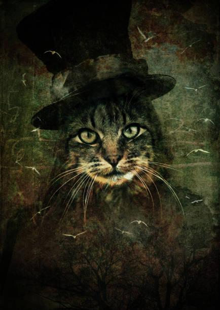 Cat with magician hat picture id108314947?b=1&k=6&m=108314947&s=612x612&w=0&h=7iunxmypitnxvbaexjxhgkcpylevkggpk4vdc7vtscy=