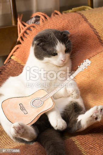 626958754 istock photo Cat with miniature paper guitar is sitting on the bed 917273686