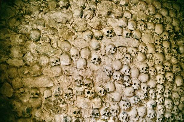 catacomb skulls - crypt stock pictures, royalty-free photos & images