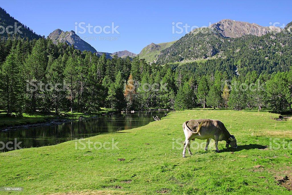 Catalan Pyrenees, Spain royalty-free stock photo