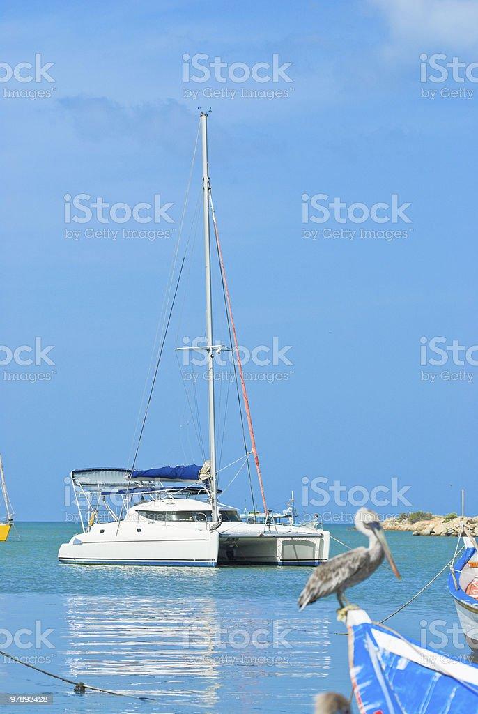 Catamaran at a Tropical Bay royalty-free stock photo