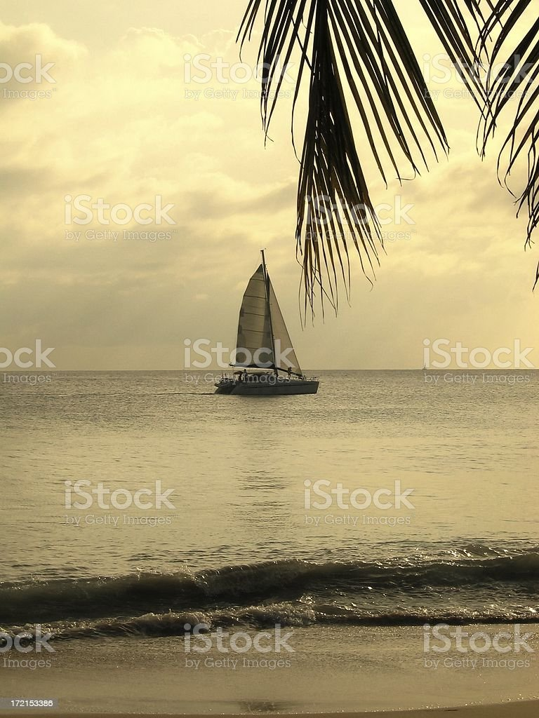 Catamaran at the sunset stock photo