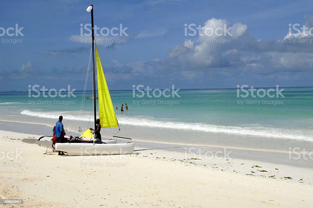 Catamaran on the beach royalty-free stock photo