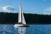 people rest on a small sailboat catamaran going against the wooded shore