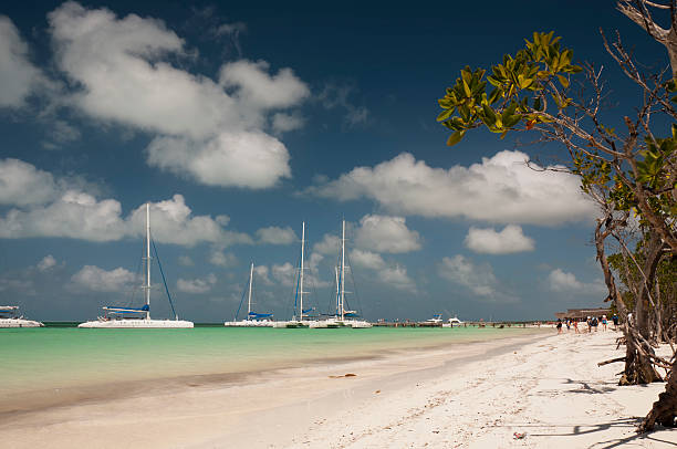 catamarans in port of cayo blanco, cuba - mahroch stock pictures, royalty-free photos & images