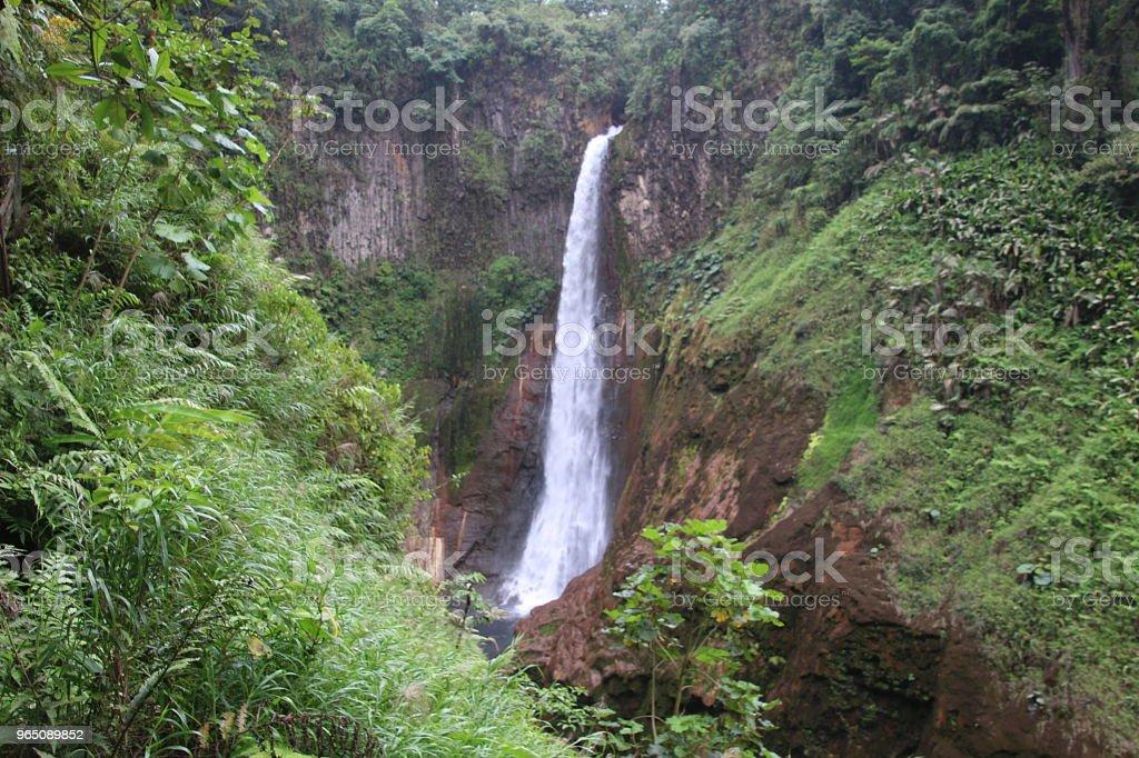 Catarata Del Toro In Costa Rica zbiór zdjęć royalty-free
