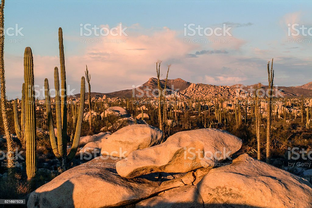 Cataviña de granito - foto de stock