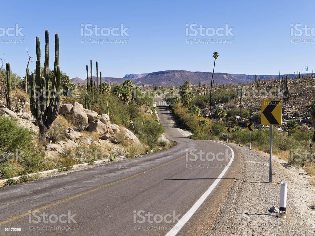 Catavina, Baja California Mexico stock photo