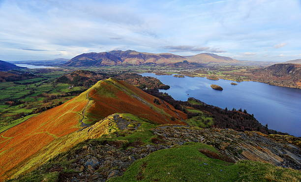catbells stock photo