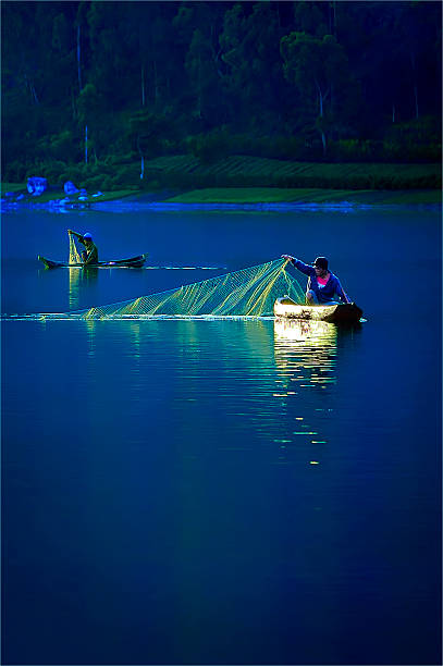 Catch Fish In The Morning stock photo