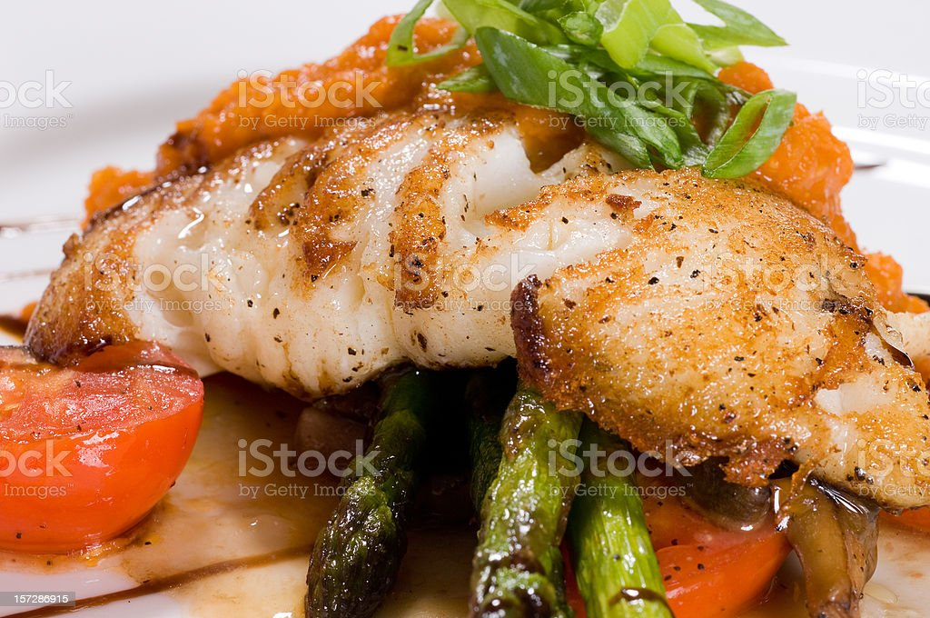 Catch of the day 2 royalty-free stock photo
