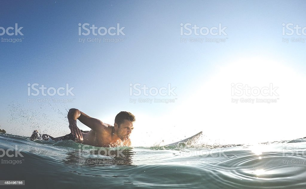 Catch the wave! stock photo
