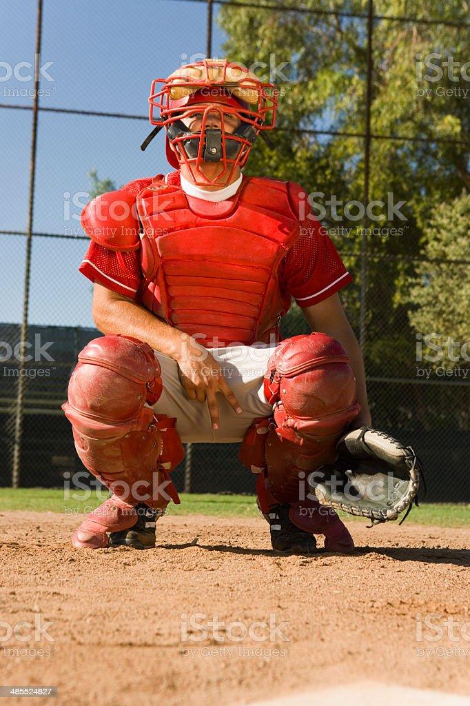 Catcher Signaling stock photo