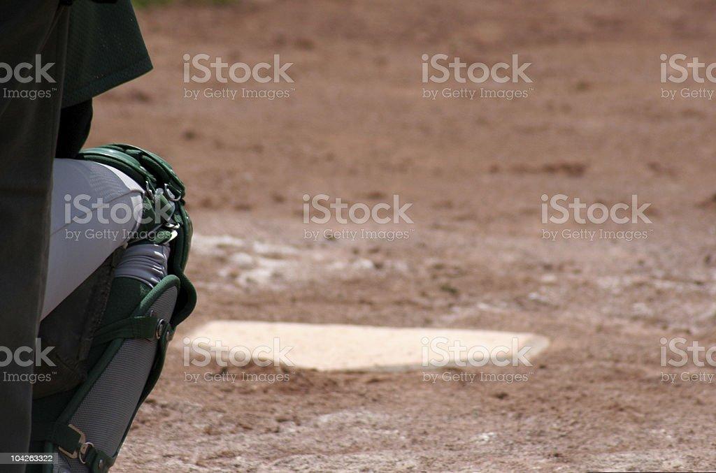 Catchers Leg stock photo