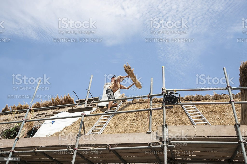 Catching bundle of reeds high on a roof. stock photo