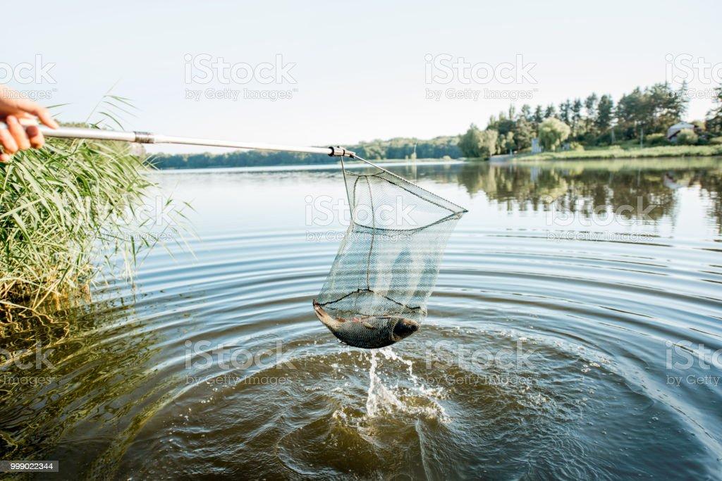 Fang von Fischen mit Netz – Foto