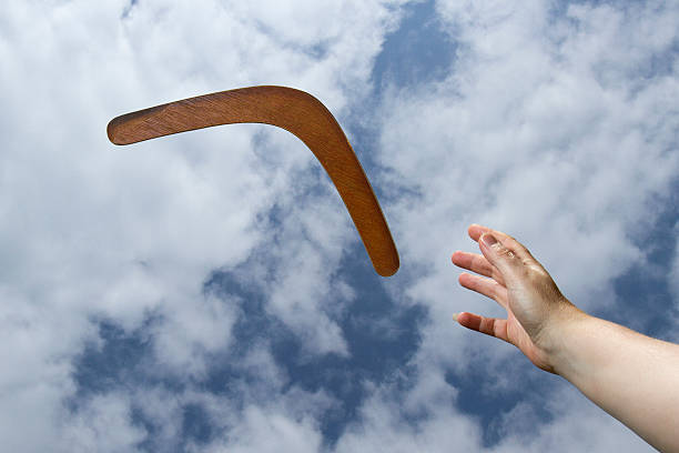 Attraper restitution boomerang, Uni - Photo