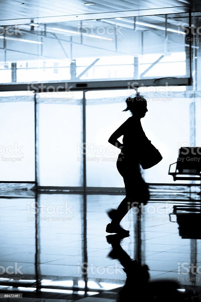 Catching that Flight royalty-free stock photo