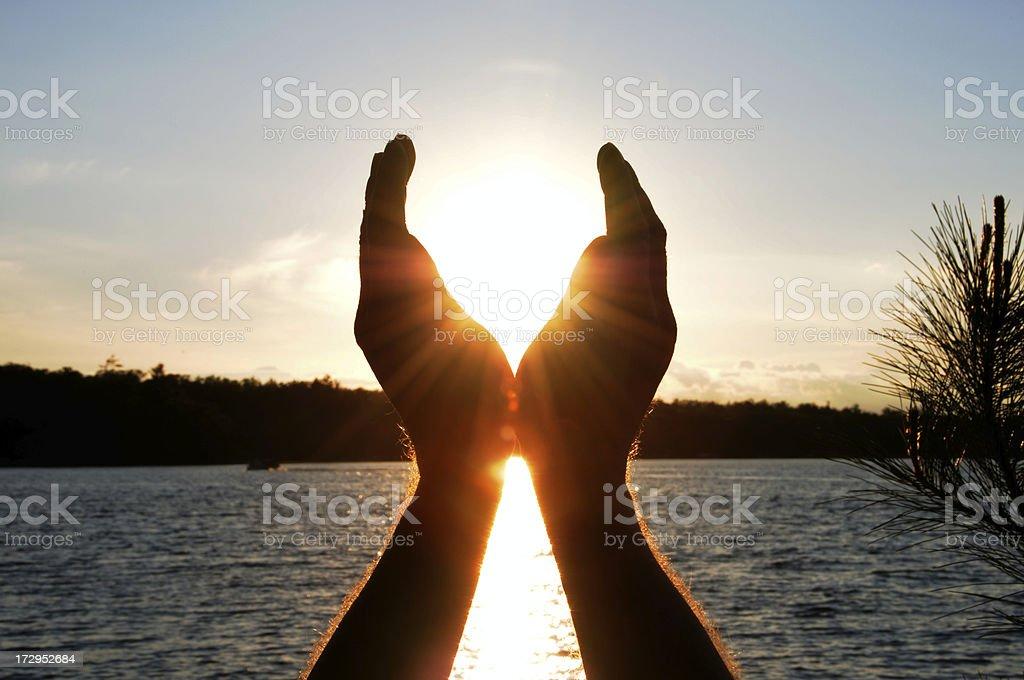 Catching The Sun (XL) stock photo