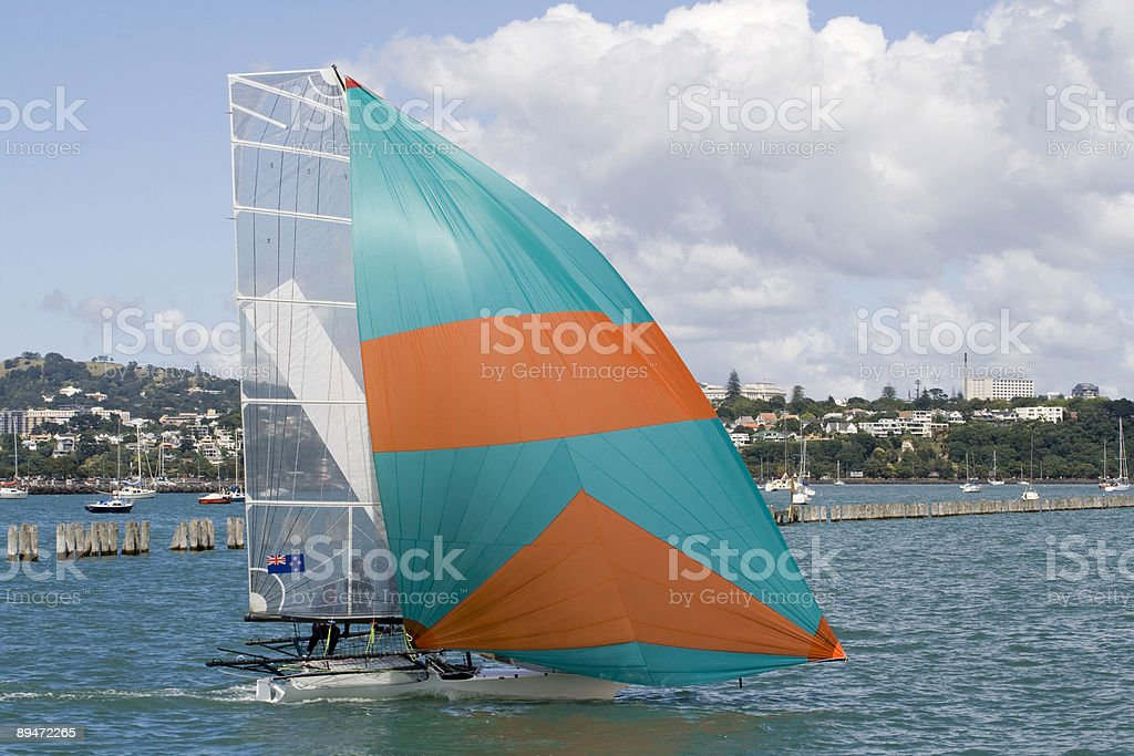Catching the Wind royalty free stockfoto