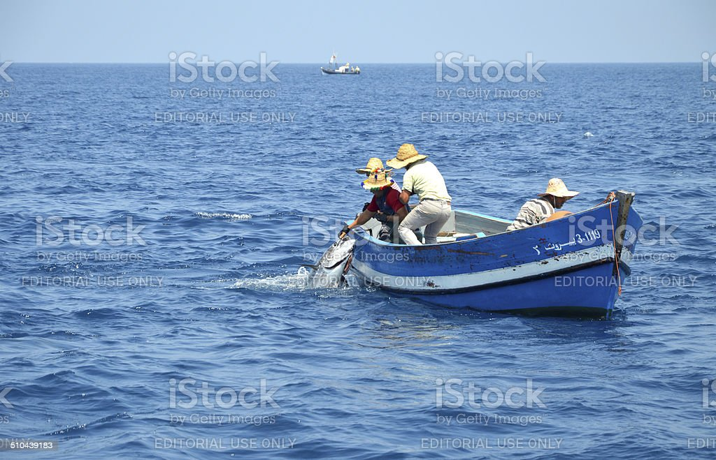 Catching tuna in Straits of Gibraltar - July 2014 stock photo
