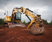 Caterpillar in a position as if its holding onto something many possibilities.