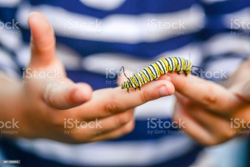 Garoto de Caterpillar - foto de acervo