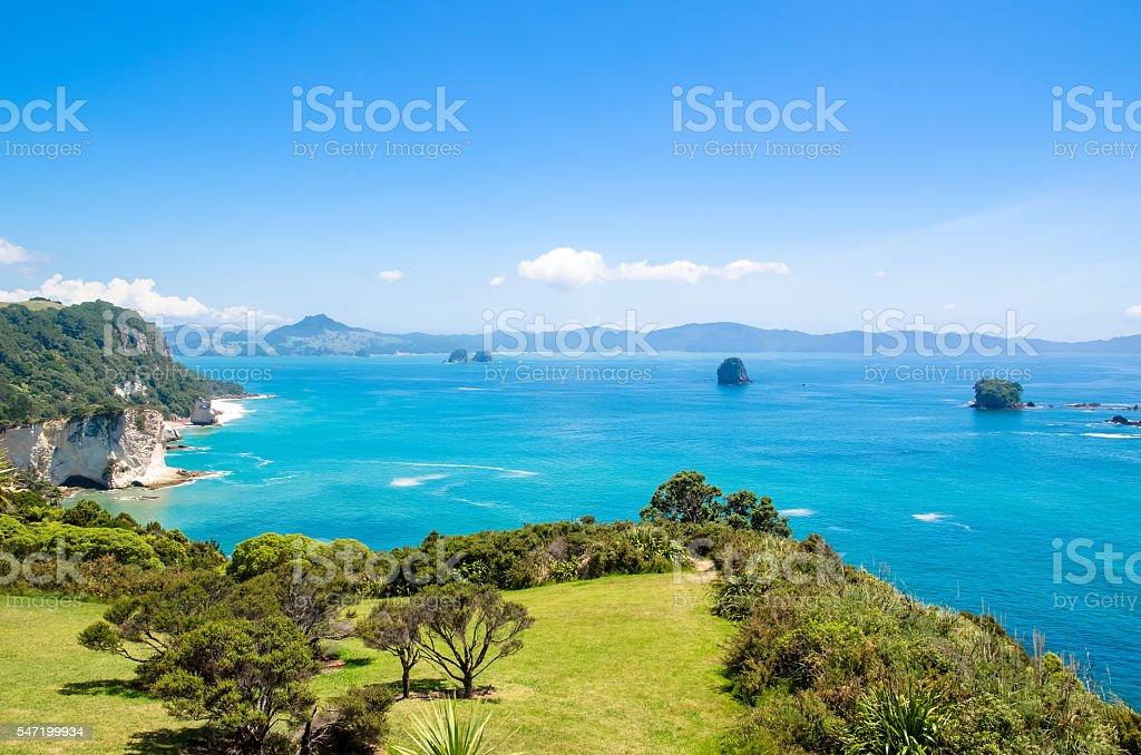 Cathedral Cove in Coromandel Peninsula, New Zealand. stock photo