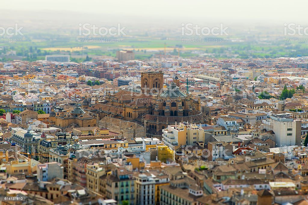 Cathedral de la Concepcion at Granada - アンダルシア州のロイヤリティフリーストックフォト