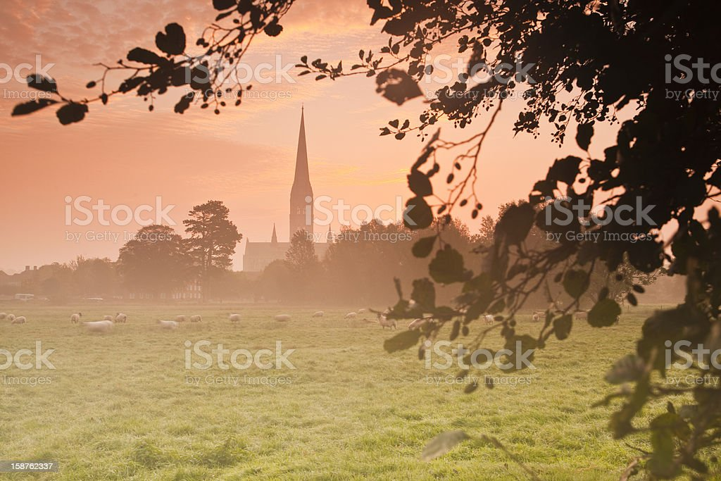Cathedral in Salisbury royalty-free stock photo