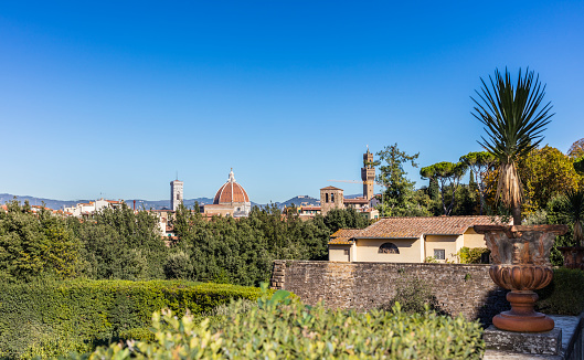 Cathedral of Florence and Palazzo Vecchio from Boboli Gardens
