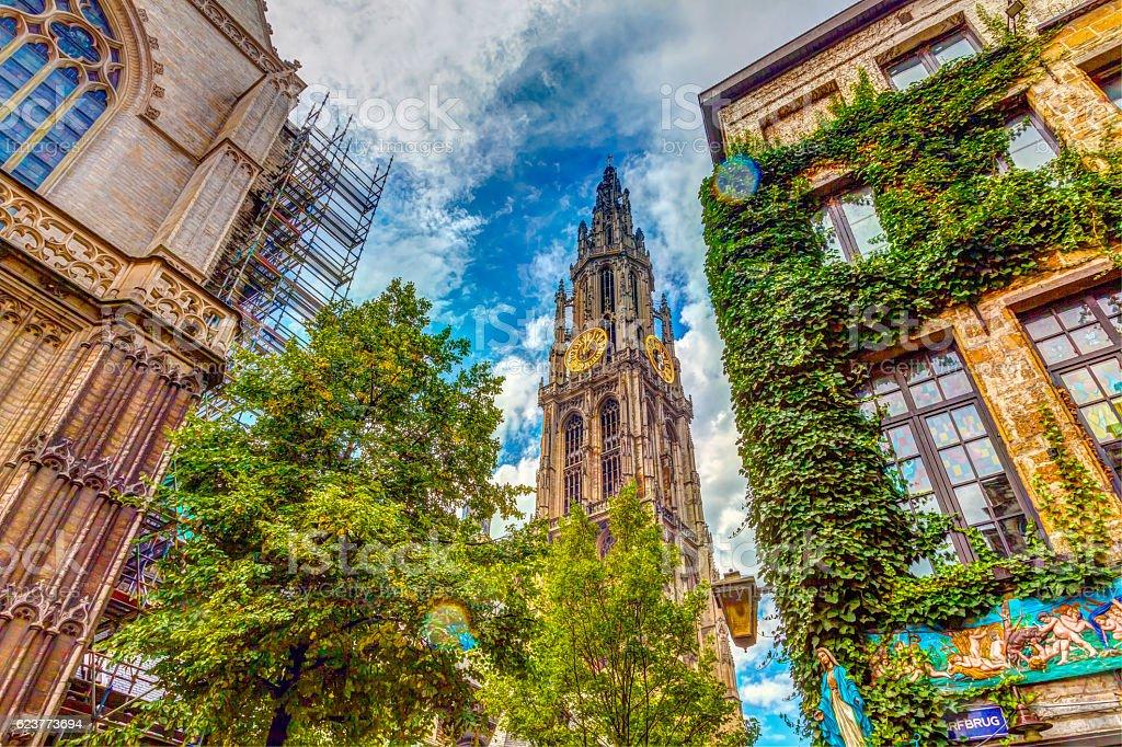 Kathedrale von Antwerpen – Foto