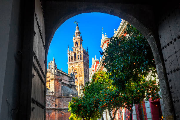 Cathedral of Saint Mary of the See. Seville, Spain. Cathedral of Saint Mary of the See. Seville, Spain. santa cruz seville stock pictures, royalty-free photos & images