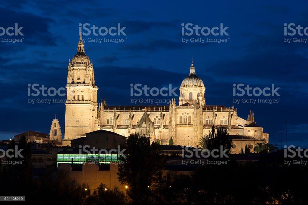 Cathedral of Salamanca stock photo